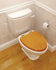 3d render of a toilet