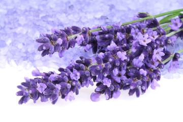 Wall Mural - Lavender and salt