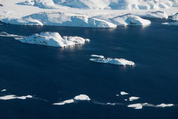 Greenland, ice floe