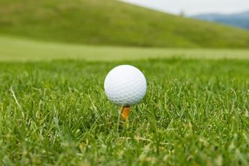 Bola de golfe sobre pino