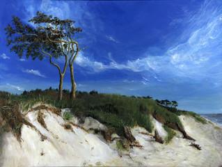 Darss im Wind - Echte Malerei - Ideal für Kunstdruck