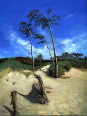 Darss Strandweg - Echte Malerei - Ideal für Kunstdruck