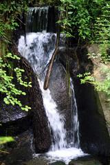 Monte Gelato.L'acqua tra le rocce.