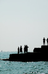 Silhouetted People On Brighton Coast 5
