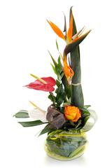 Bouquet exotique sur fond blanc