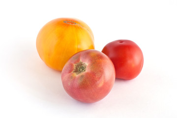 Three many-coloured tomatoes