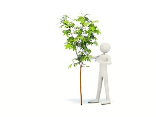 Man with tree isolated on white