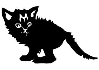 outcast kitty