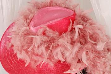 Chapeau et plume