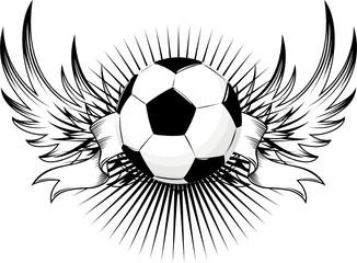 insignia soccer