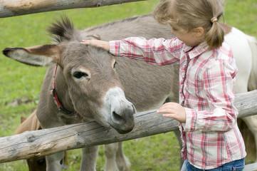 Photo sur Plexiglas Ane Little girl on farm