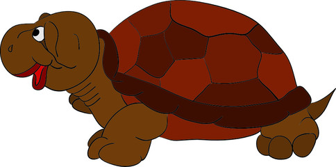 vector - happy turtle isolated on background