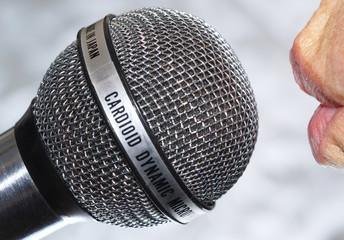 Mikrofon 12