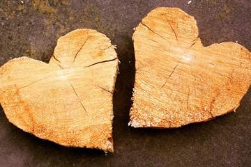 Aus dem gleichen Holz