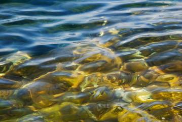 Reef ripples