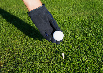Hand in glove golf black, putting a ball on a tee peg.