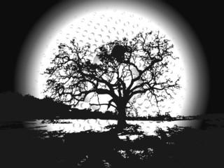 arbre en ombre chinoise