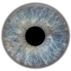 Photo sur Toile Iris eye3