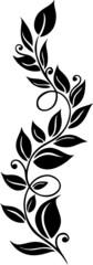 Blätter, Laub, Herbst, Ranke, Blätterranke