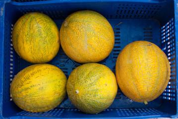 Cantaloupes on market