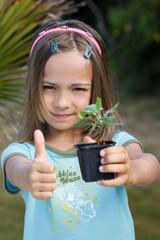 OK pour planter l'arbuste