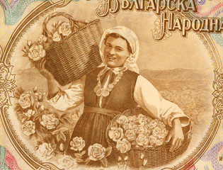 Woman Harvesting Roses on 50 Lev 1951 Banknote from Bulgaria