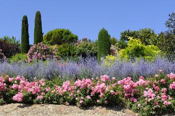 Fotobehang Lavendel jardin provençal