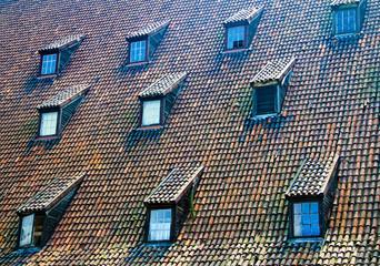 Tiled roof windows
