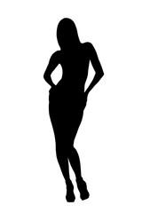 Sexy female silhouette