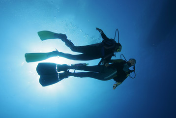 Photo sur Plexiglas Plongée Taucher im freien Wasser|Divers in the water|