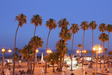 Palm Tree Beach of Larnaca at Dusk