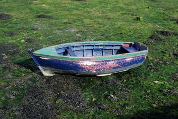 Barque coloriée