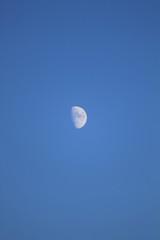 Mezza luna di giorno