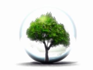 l'arbre dans sa bulle