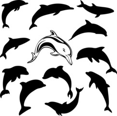 Dolphin collage (vector)