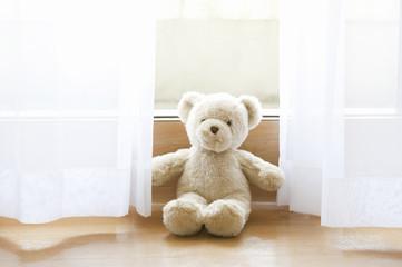 クマのぬいぐるみ - fototapety na wymiar
