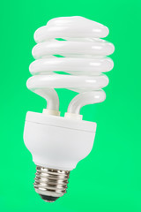 Compact Fluorescent Lightbulb