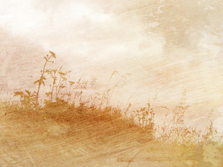 vintage background texture with flowers and grass