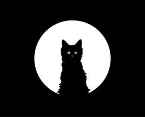 kitten under the moon