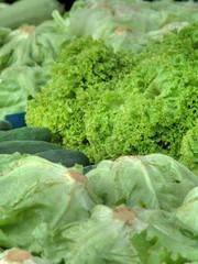 Vegetable market nb.15