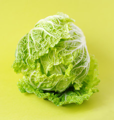 chinese cabbage or salad Romano