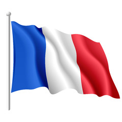 French flag. Vector.