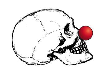 cranio buffo