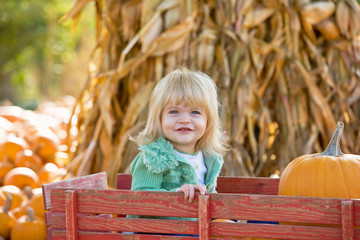 Little Girl in Wagon at the Pumpkin Patch