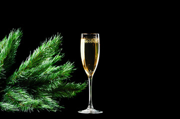 Champagne Glass And Pine Branch