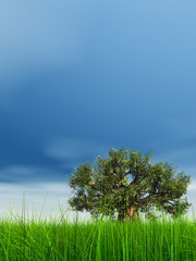 3d green grass over a blue sky with old baobab tree