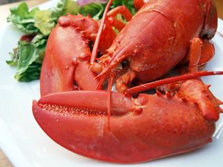 lobster meal 6