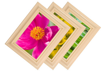 Photo frames (with summer photos of flowers and nature)