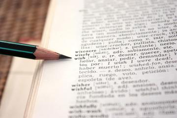 'wish' word in English-Spanish dictionary