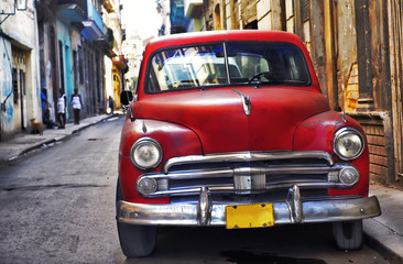 Garden Poster Cars from Cuba Old havana car